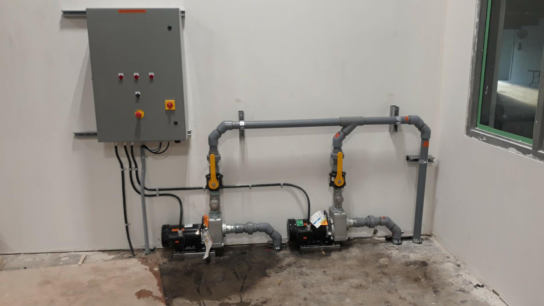 Duplex pump system